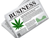 Do You Have a Future in Cannabis?